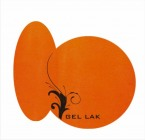 GEL LAK - EXCELENT ORANGE neon